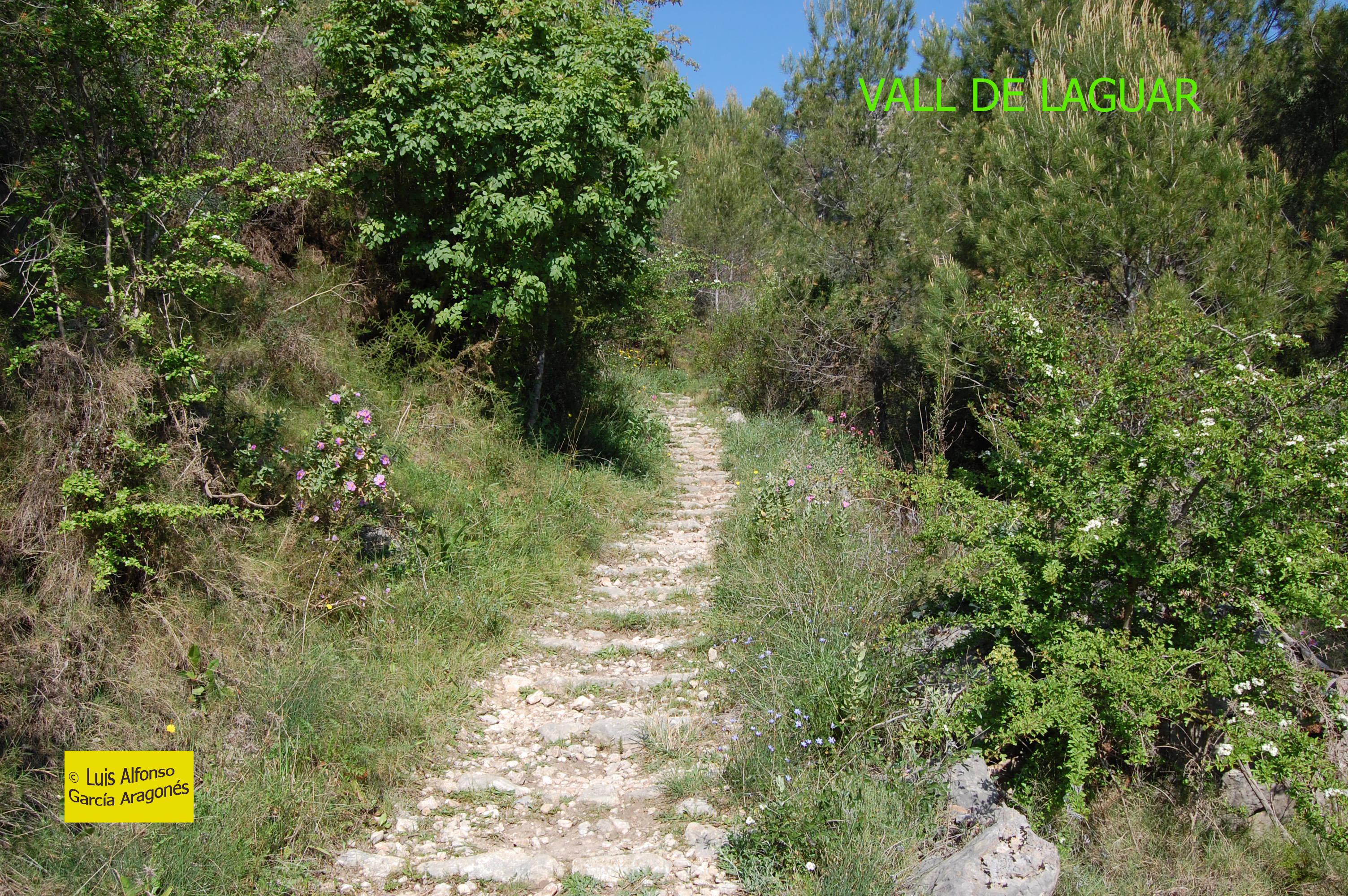 Vall de L'Aguar copia